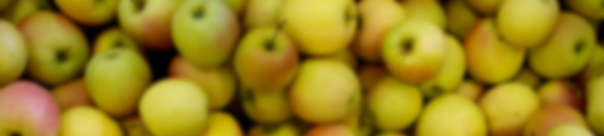 arp-Pommes-Jaunes