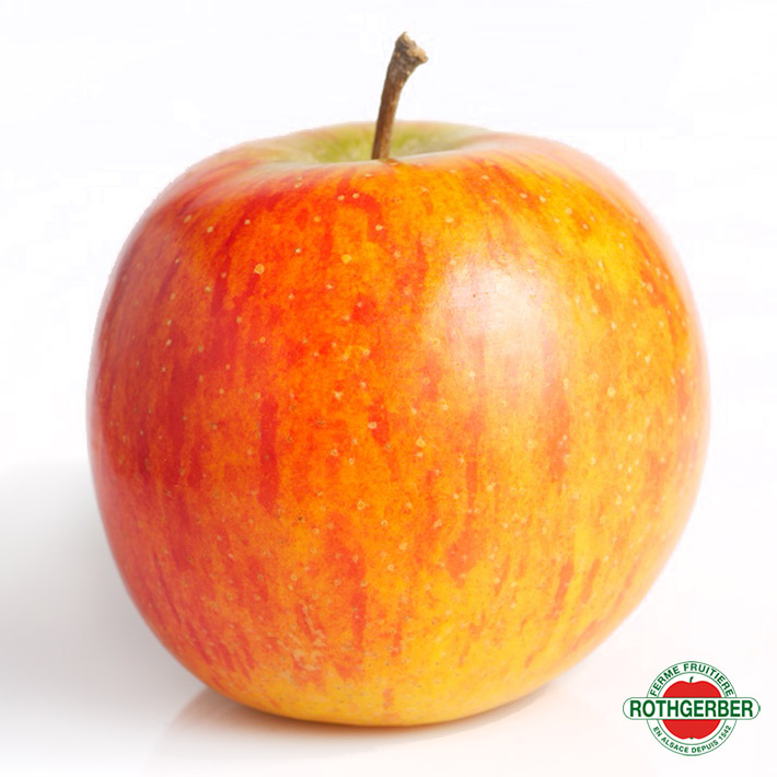 pommes red delicious