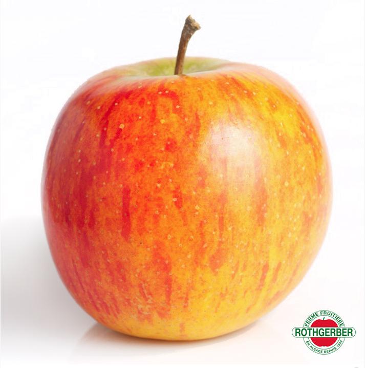 La Rubinette Pomme Surprenante Rothgerber Ferme